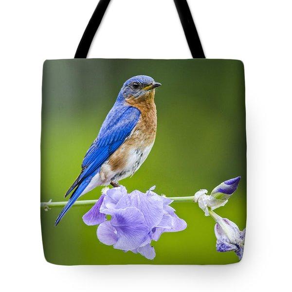 Bluebird On Iris Tote Bag