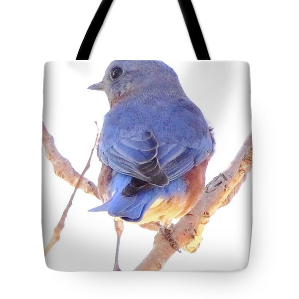 Bluebird On White Tote Bag by Robert Frederick