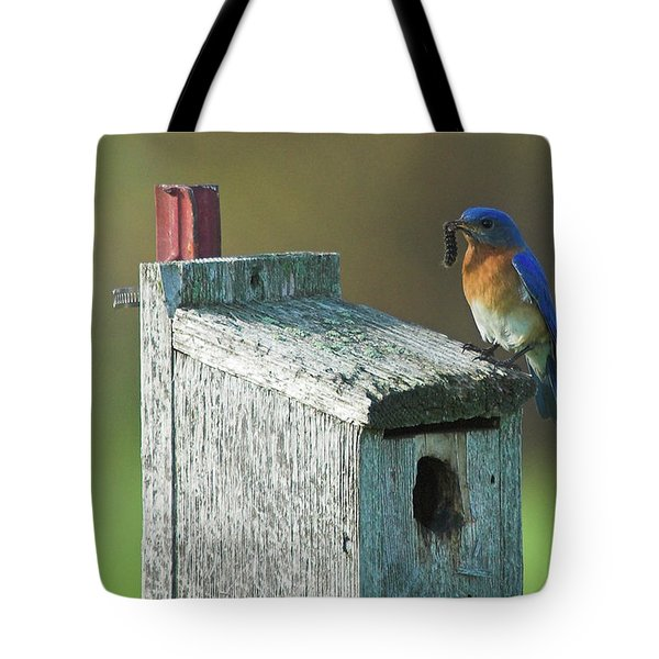 Tote Bag featuring the photograph Bluebird by Steve Stuller