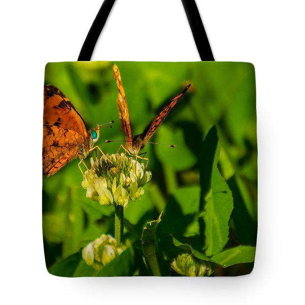 Bluehead Butterfly Tote Bag