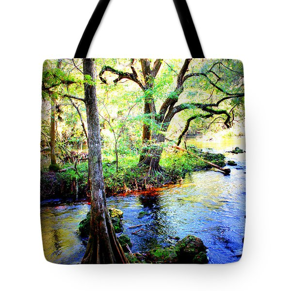 Blues In Florida Swamp Tote Bag by Carol Groenen