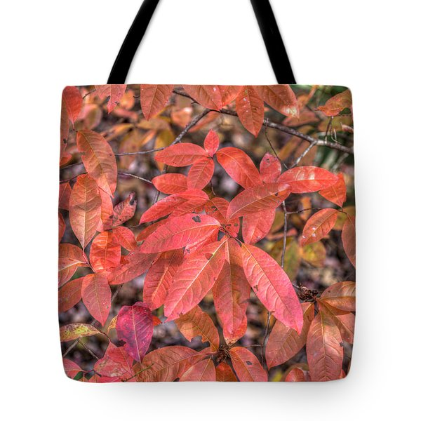 Blush Of Color Tote Bag