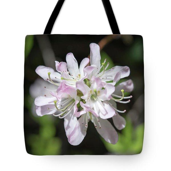 Blushing Azaleas Tote Bag