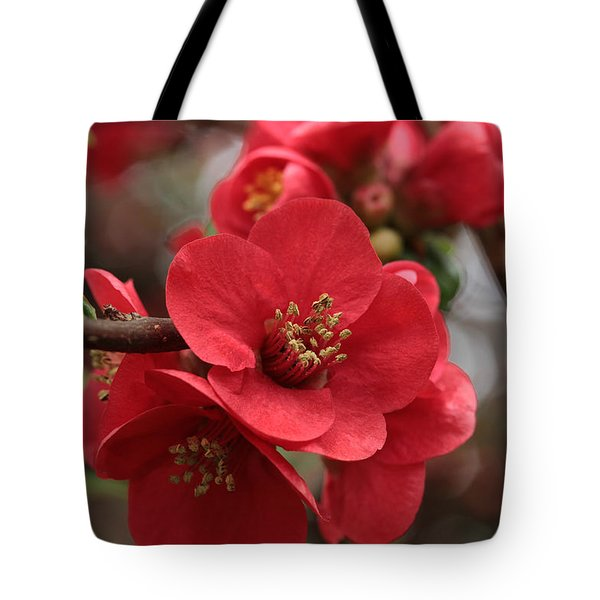 Blushing Blooms Tote Bag