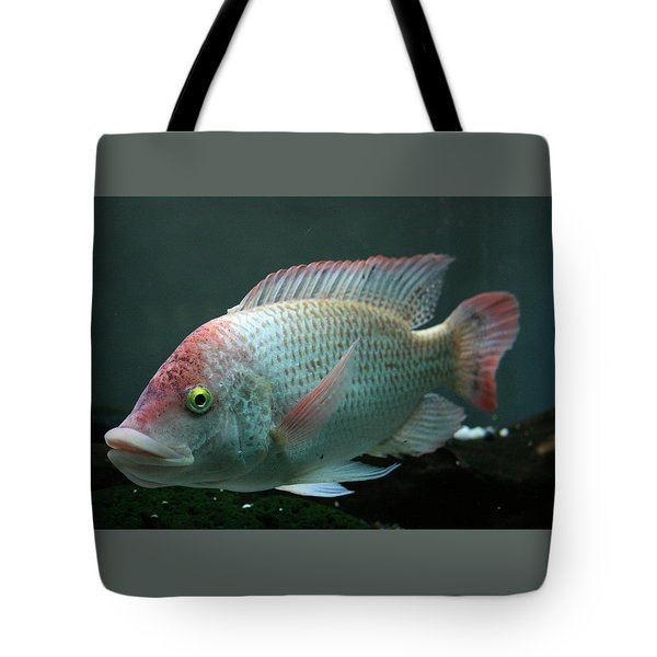 Blushing Tilapia Tote Bag