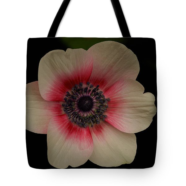 Tote Bag featuring the photograph Blushing  by Uri Baruch