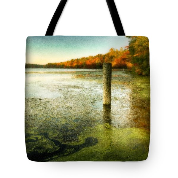 Blydenberg Park In The Fall Tote Bag