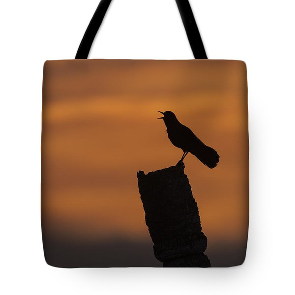 Boat-tailed Grackle At Sunset Tote Bag