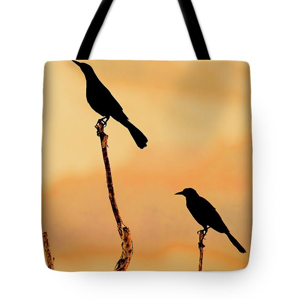 Boat Tailed Grackles Tote Bag