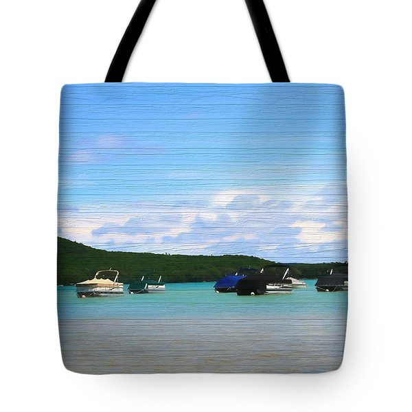 Boats In Sleeping Bear Bay Wood Texture Tote Bag by Dan Sproul