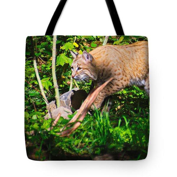Bobcat At Water's Edge Tote Bag