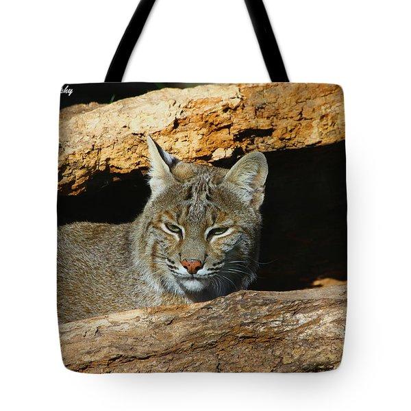 Bobcat Hiding In A Log Tote Bag