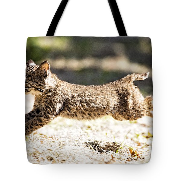 Bobcat Kitten On The Run Tote Bag by Michael White