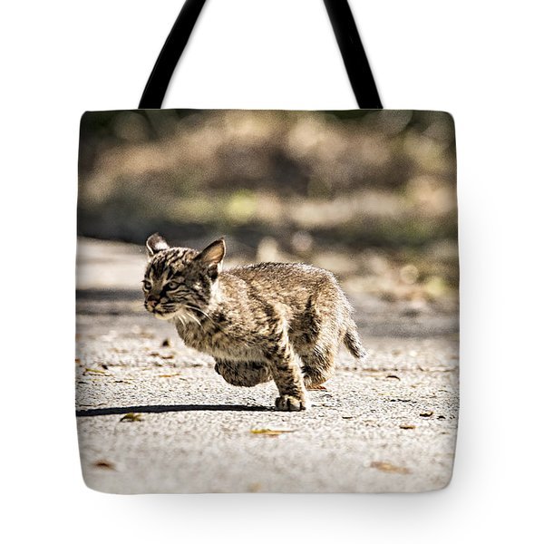 Bobcat On The Run Tote Bag by Michael White
