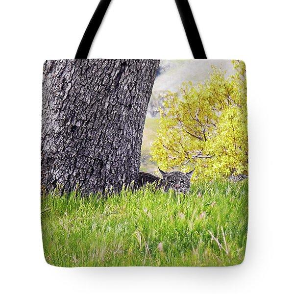 Bobcat Watch Tote Bag by Karen  W Meyer