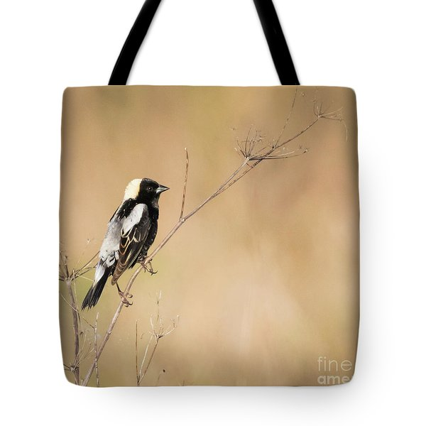 Tote Bag featuring the photograph Bobolink  by Ricky L Jones