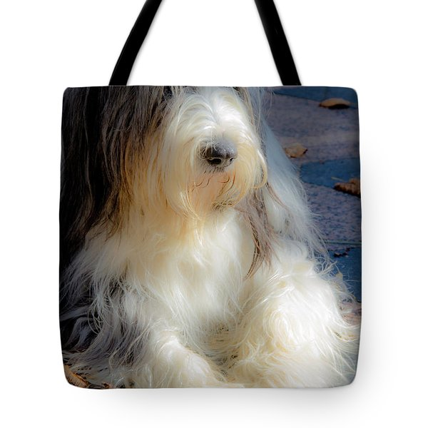 Bobtail's Nap Tote Bag