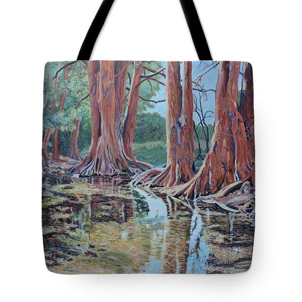 Boerne River Scene Tote Bag