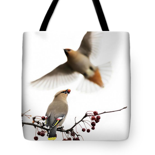 Tote Bag featuring the photograph Bohemian Waxwings by Mircea Costina Photography
