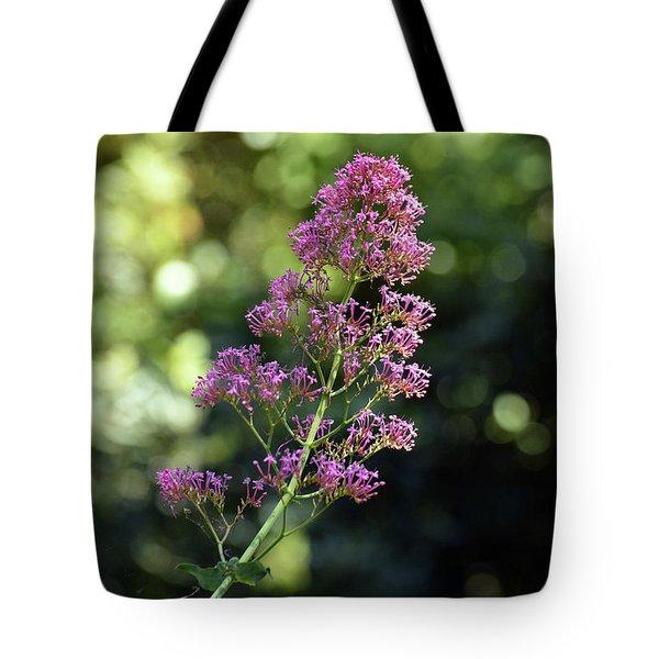 Bokeh Of Anacapri Flower Tote Bag