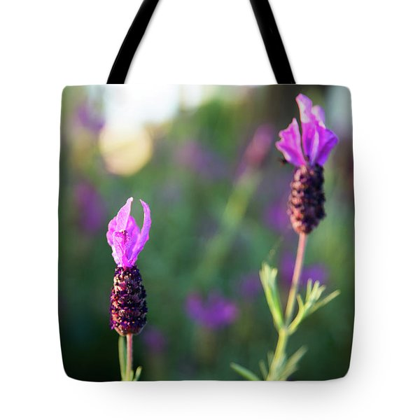 Tote Bag featuring the photograph Bokehlicious Bloom by Lora Lee Chapman