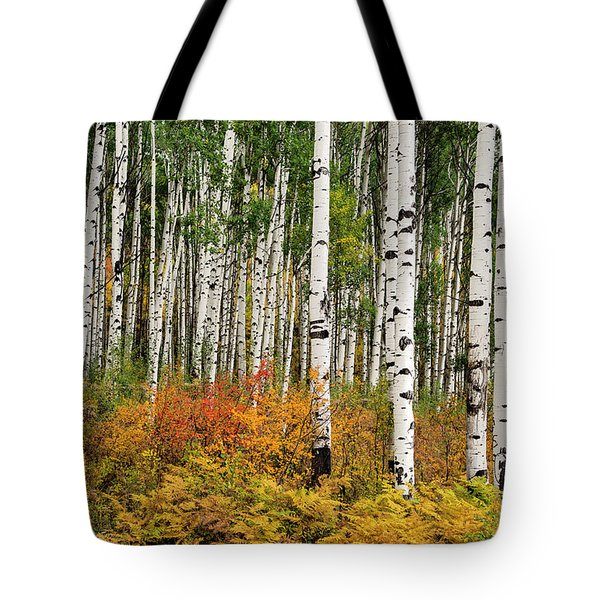 Tote Bag featuring the photograph Bold And Magnificent Autumn by Tim Reaves