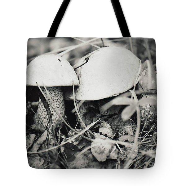 Boletus Mushrooms Tote Bag by Juls Adams
