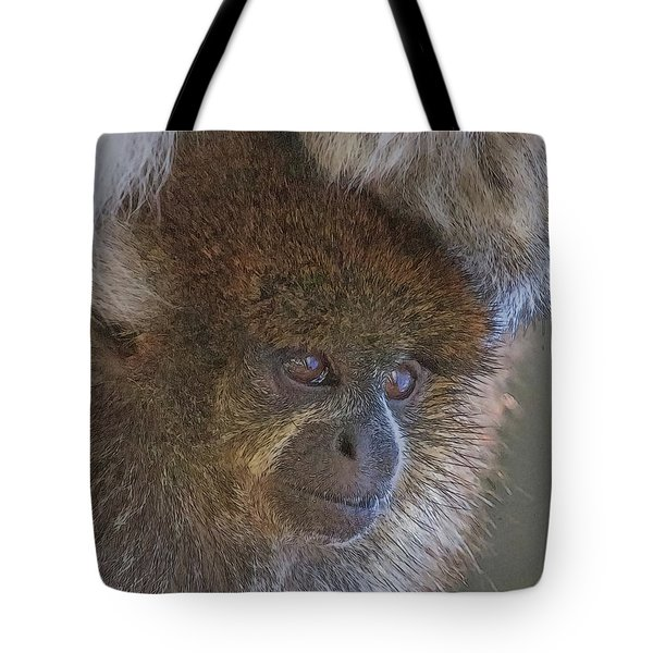 Bolivian Grey Titi Monkey Tote Bag