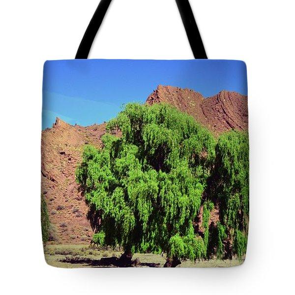 Bolivian Landscape  Tote Bag