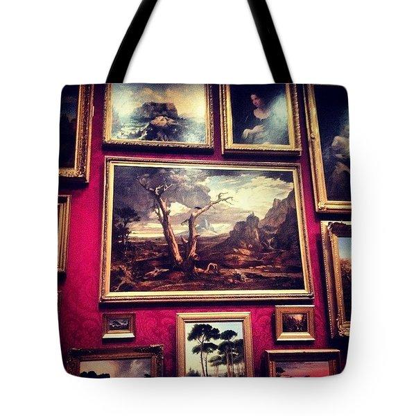 Museum Of Fine Arts Tote Bag
