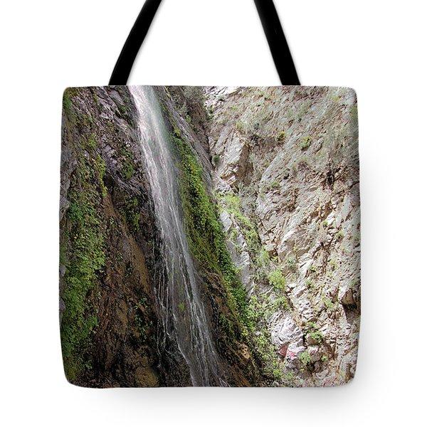 Bonita Falls Tote Bag by Viktor Savchenko