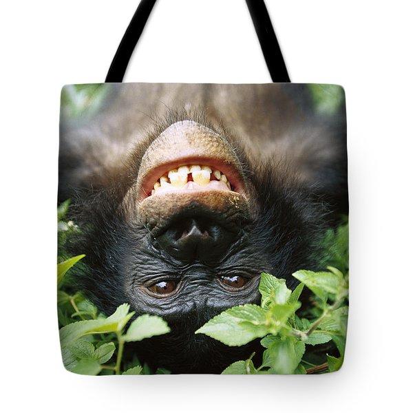 Bonobo Smiling Tote Bag