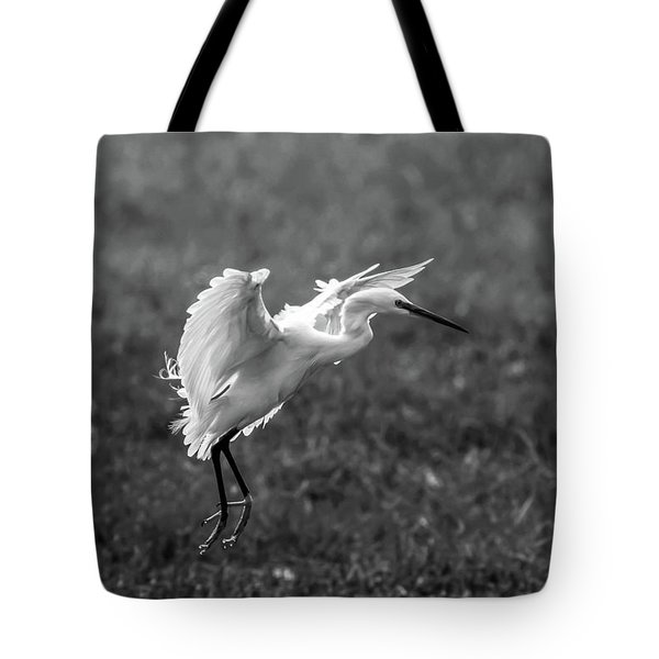 Book_cover_snowy Egret Tote Bag