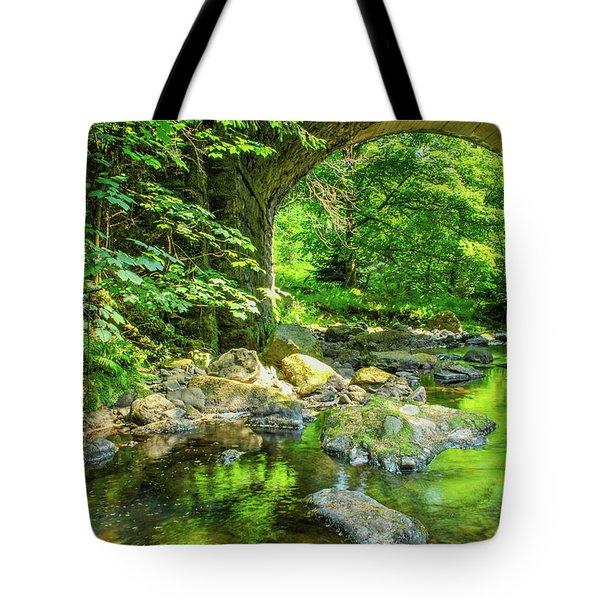 Boola Bridge  Tote Bag