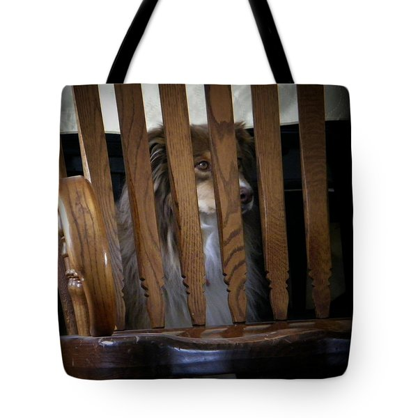 Tote Bag featuring the photograph Bootsie by Lenore Senior