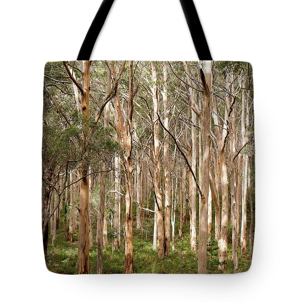 Tote Bag featuring the photograph Boranup Forest Portrait by Ivy Ho