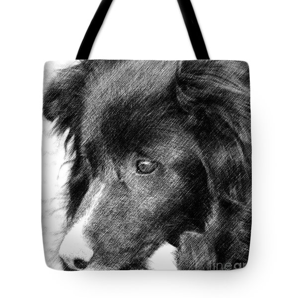 Border Collie In Pencil Tote Bag