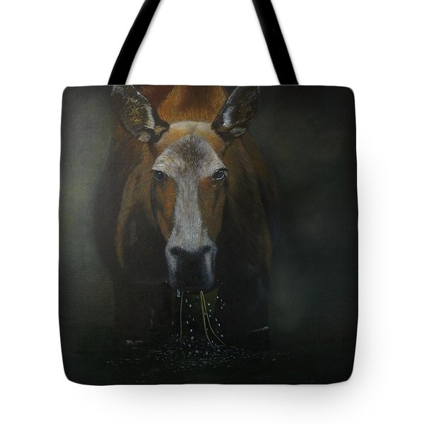 Boreal Beauty Tote Bag