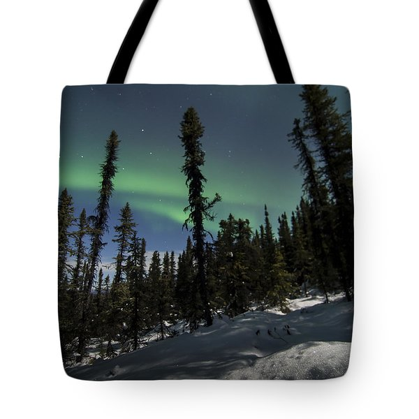 Boreal Forest Essence Tote Bag