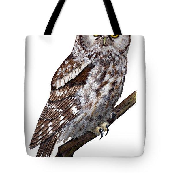 Boreal Owl Tengmalm's Owl Aegolius Funereus - Nyctale De Tengmalm - Paerluggla - Nationalpark Eifel Tote Bag