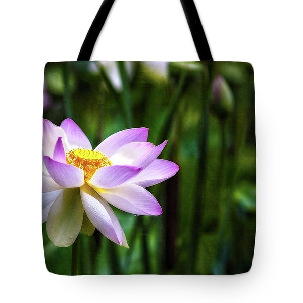 Tote Bag featuring the photograph Born Of The Water by Edward Kreis