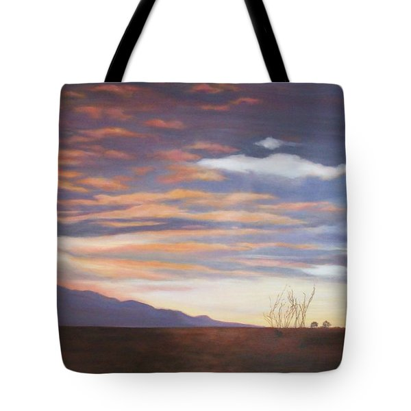 Borrego After The Storm Tote Bag