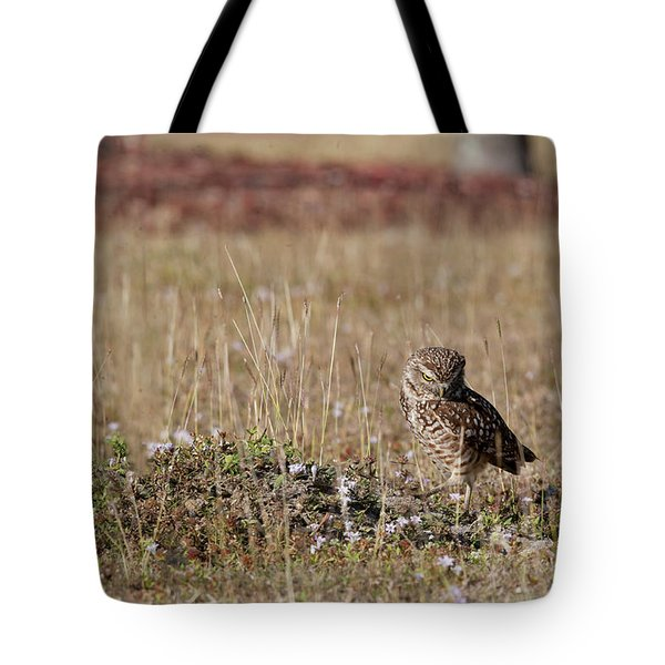 Borrowing Owl Outside His Home Frowning Tote Bag