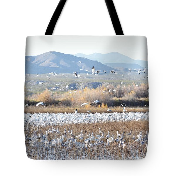 Bosque Del Apache Snow Geese Landscape Tote Bag by Andrea Hazel Ihlefeld