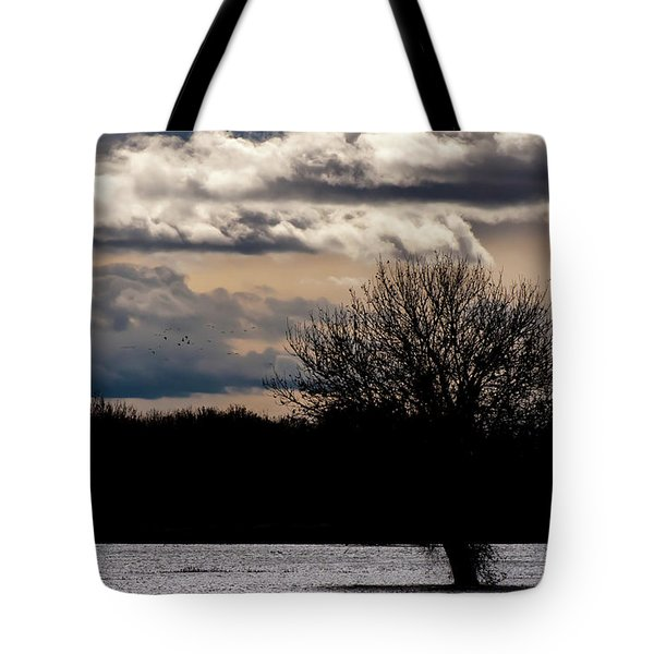 Tote Bag featuring the photograph Bosque Sunset by Britt Runyon