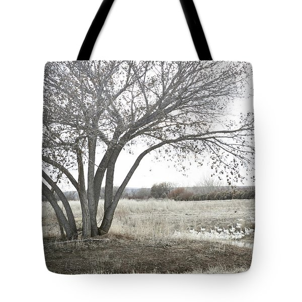 Tote Bag featuring the photograph Bosque Tree Snow Geese by Andrea Hazel Ihlefeld