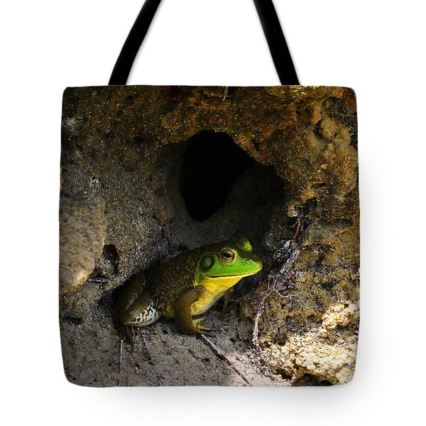 Tote Bag featuring the photograph Boss Frog by Al Powell Photography USA