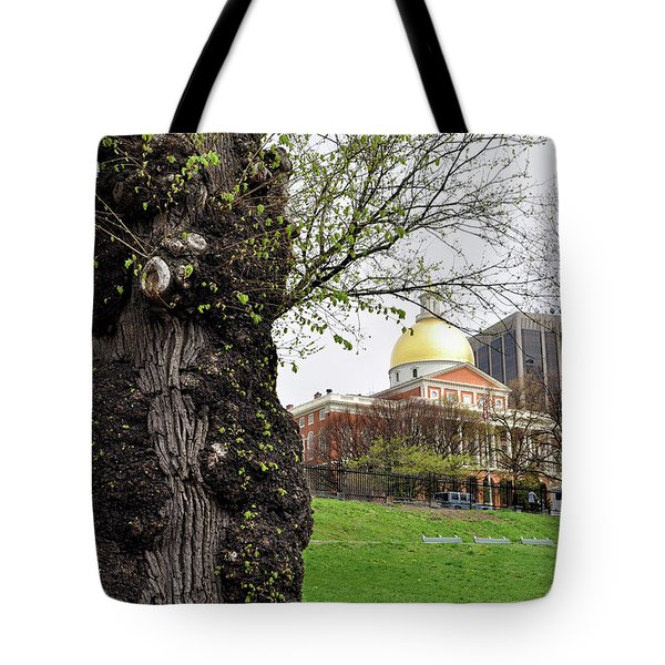 Boston Ma State House From Afar Tote Bag