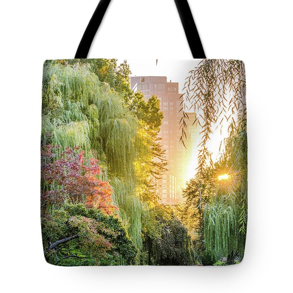 Boston Public Garden Sunrise Tote Bag by Mike Ste Marie