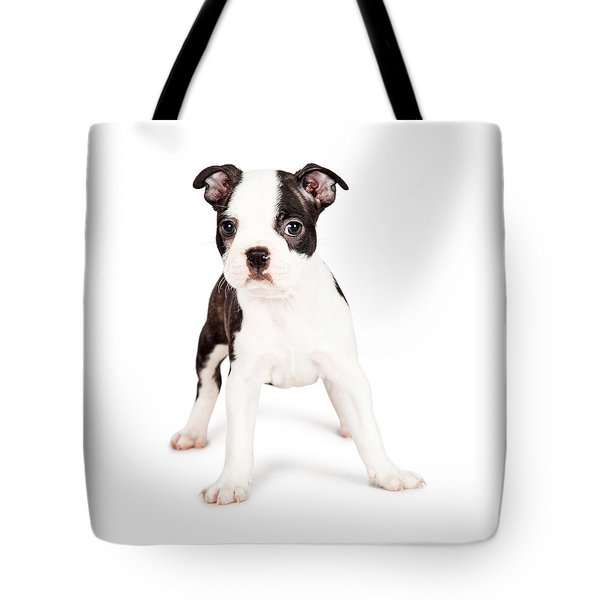 Boston Terrier Puppy Looking At The Camera Tote Bag